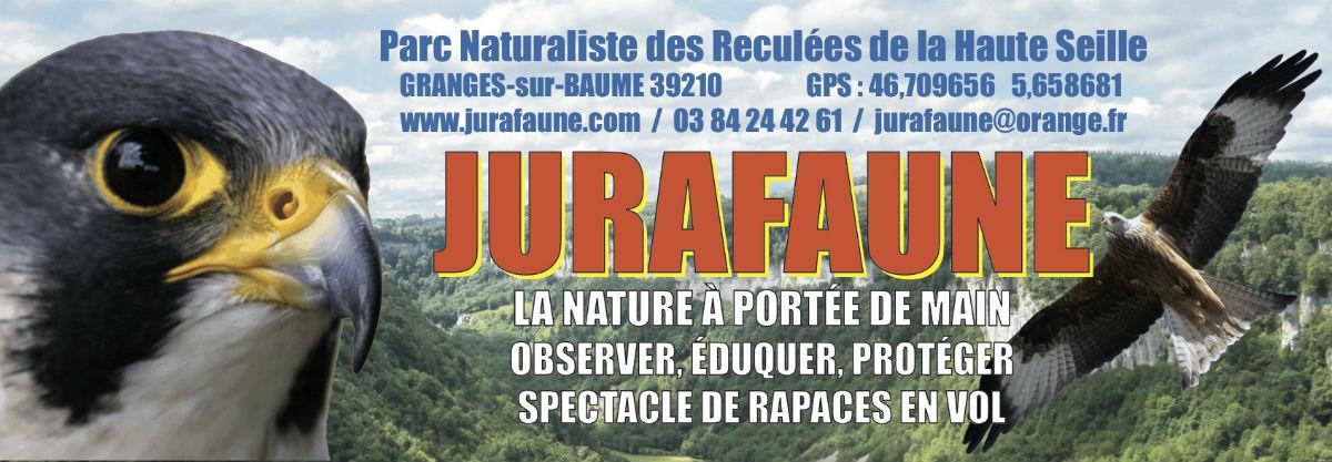 Image Jurafaune