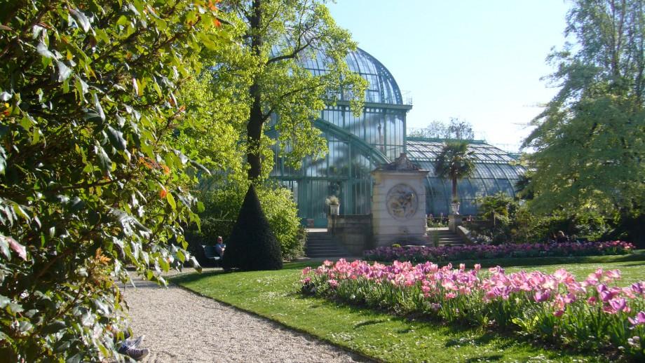 Image Jardin des serres d'Auteuil