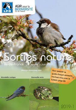 Image Sortie ornithologique avec la LPO - parc de Sceaux