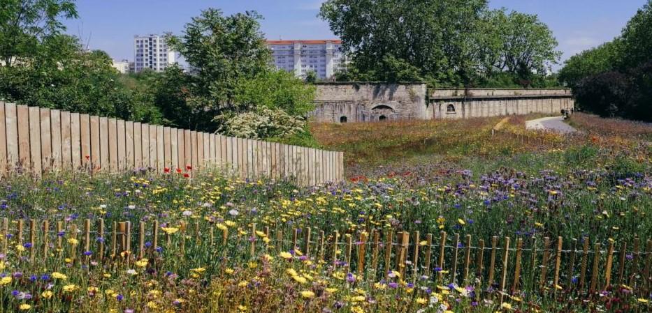 Image Visite du parc Blandan