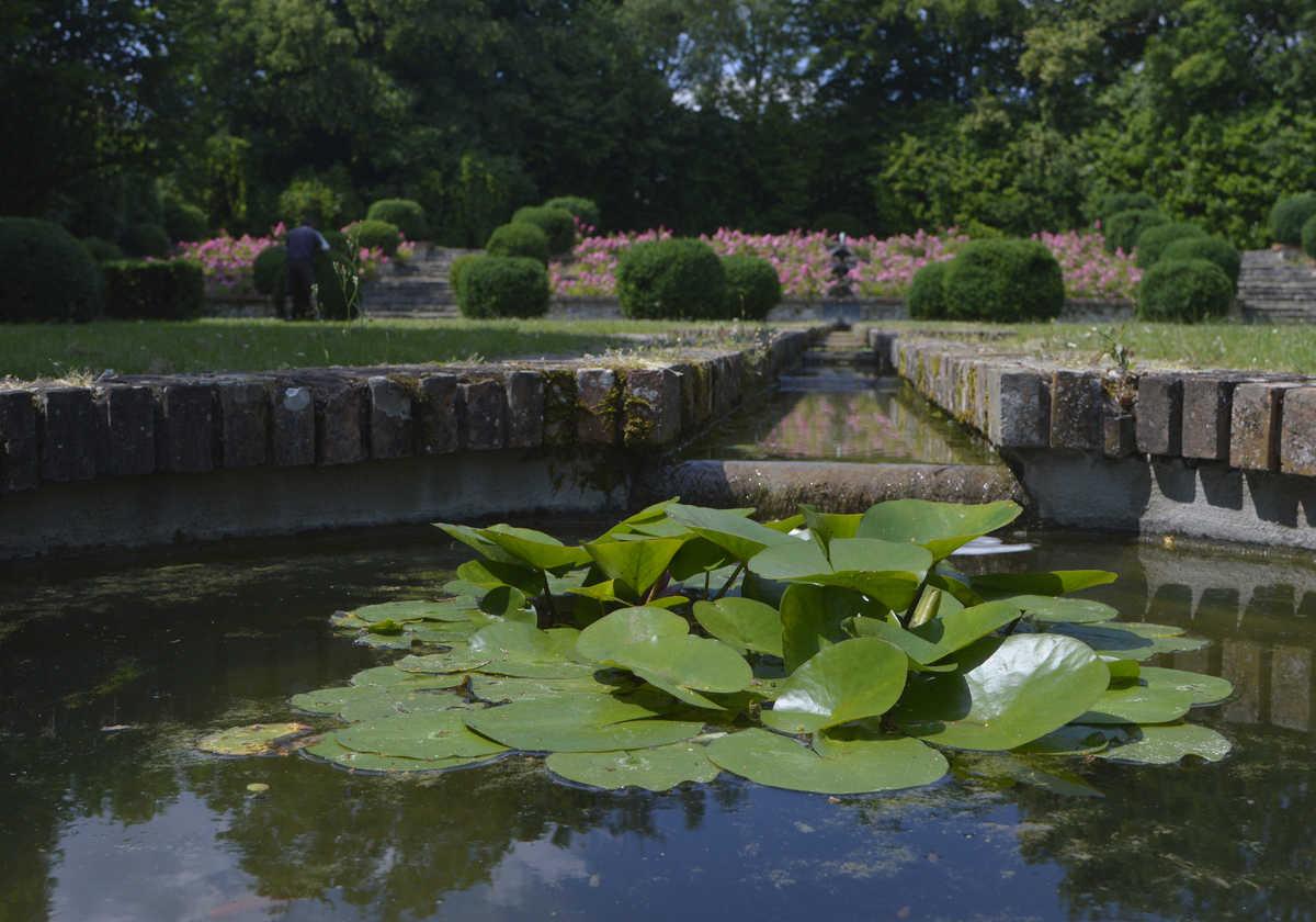 Image Parc Boussard