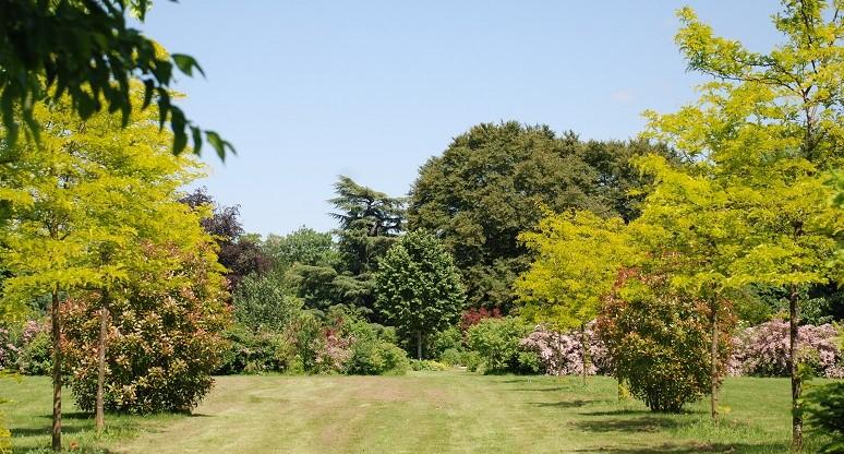 Image Arboretum du Val des Dames