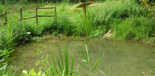 Image Le jardin de la biodiversité des Lacs de l'Essonne