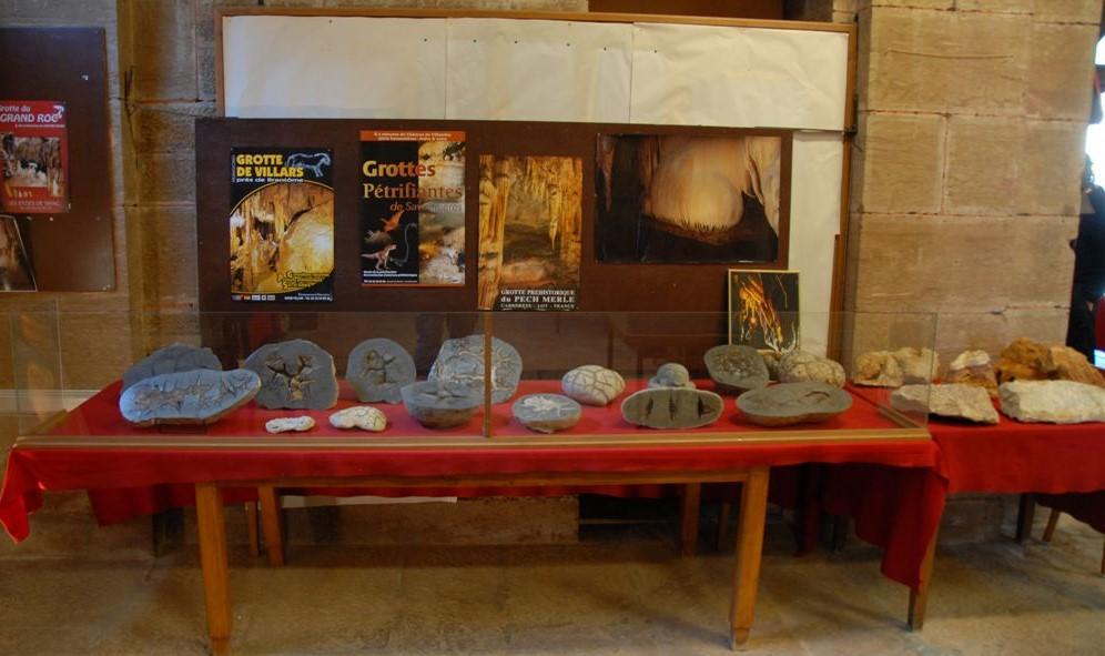 Image Musée de la paléontologie, géologie et des minéraux