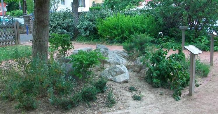 Image Le Jardin des 5 sens
