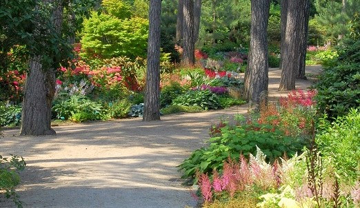 Image Parc floral de Paris