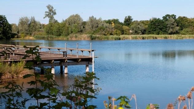 Image Parc départemental de la Boucle de Montesson