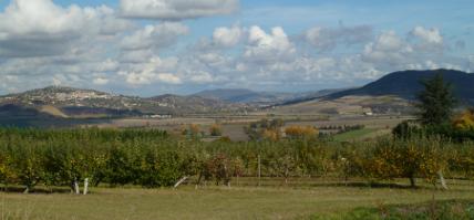 Image Domaine de Beaune