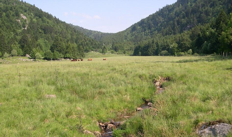 Image La vallée du Fossat et rochers de la pause