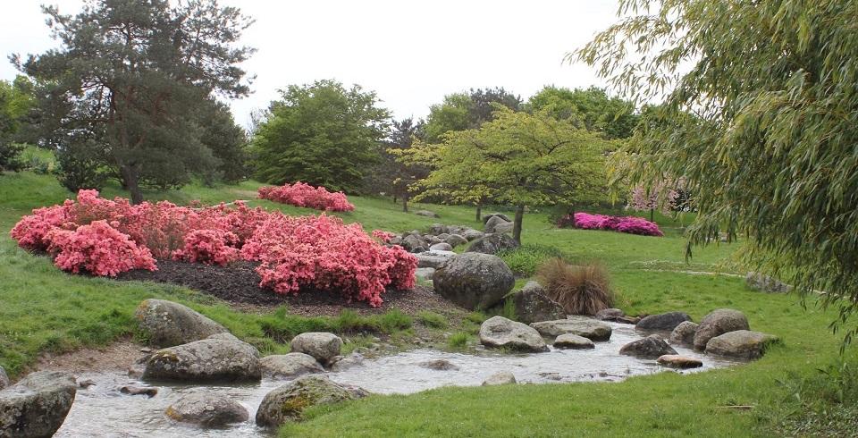 Image Le parc Floral