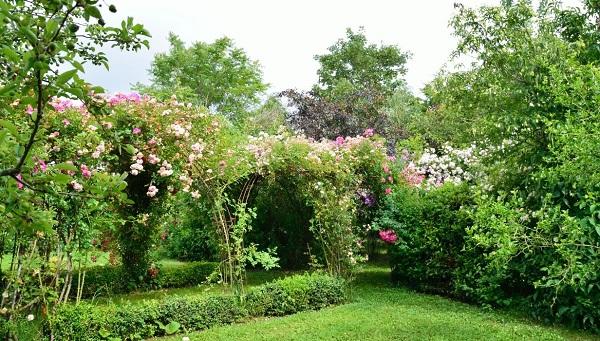 Image Le jardin d'En Galinou