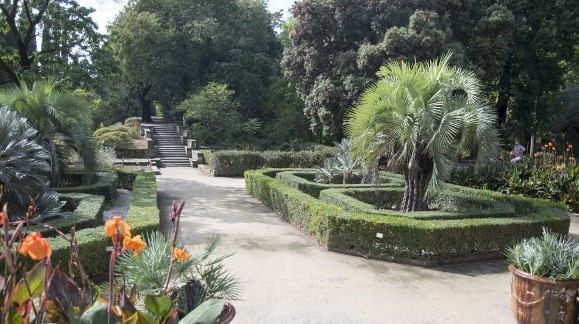 Image Jardin des plantes de Montpellier