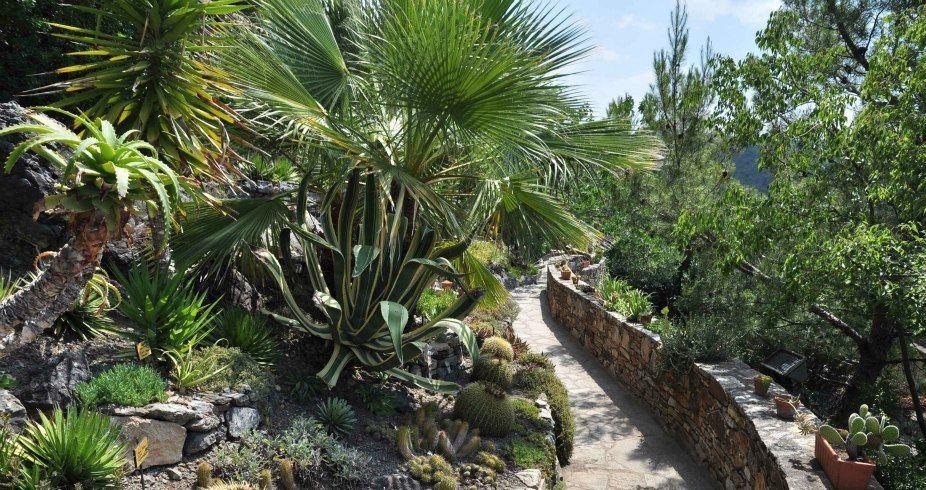Image Jardin Méditerranéen de Roquebrun