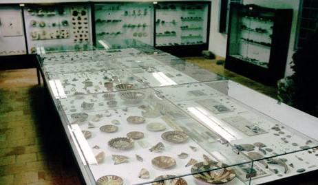 Image Musée d'archéologie et de paléontologie de Minerve