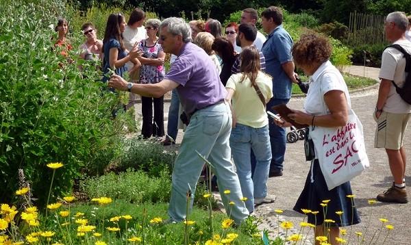 Image Les jardins des plantes sauvages et médicinales