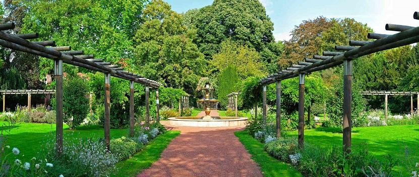 Image Le jardin botanique