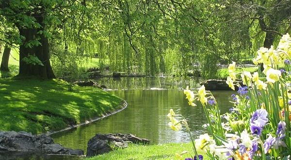 Image Le parc Barbieux