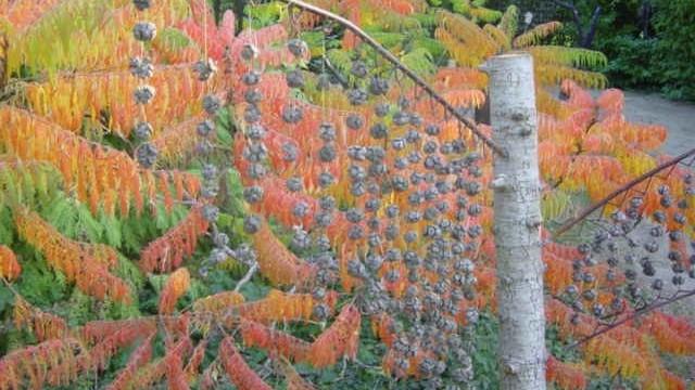 Image Le Jardin d'Eguilles