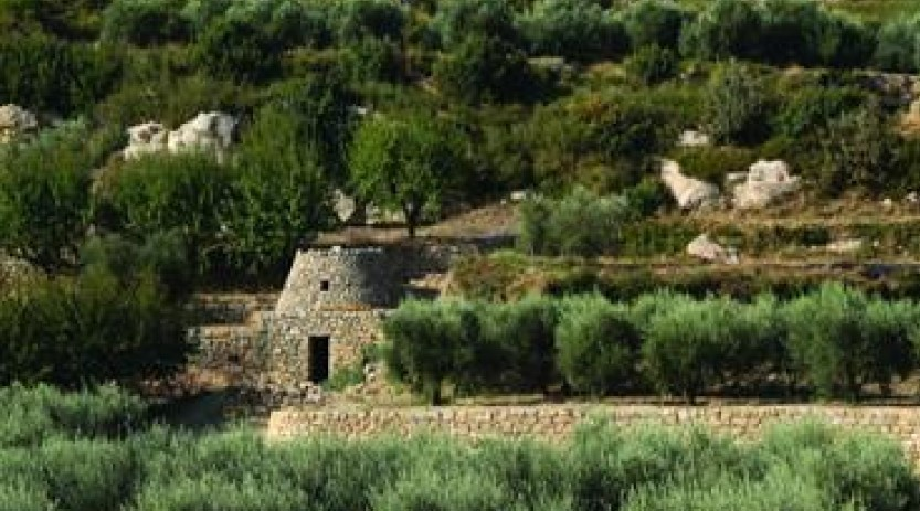 Image Le sentier de la Pastorale
