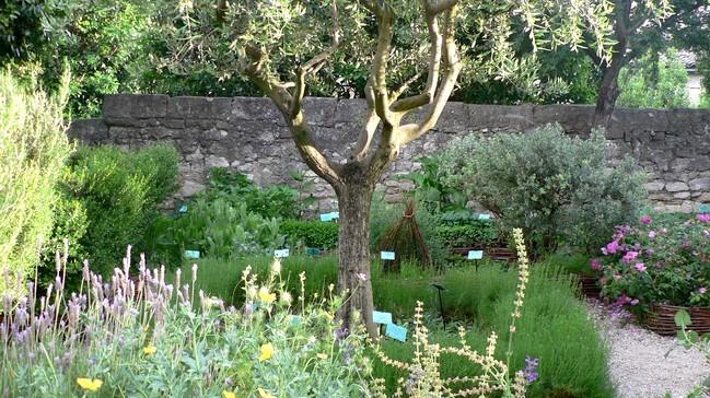 Image Le Jardin Médiéval d'Uzès