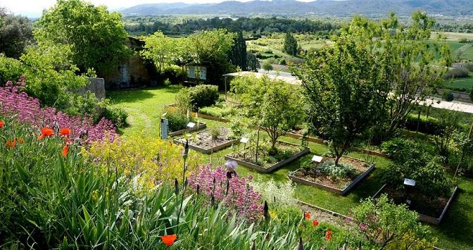 Image Jardin conservatoire des plantes tinctoriales