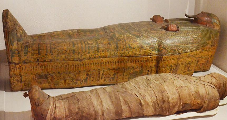 Image Musée des beaux-arts et d'archéologie Joseph Déchelette