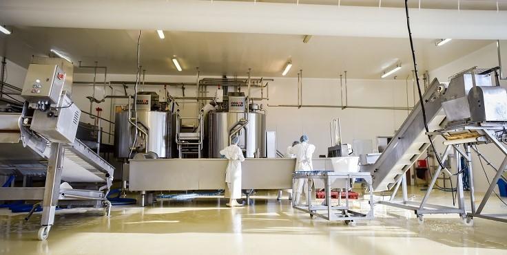 Image Entreprise laitière de Sauvain