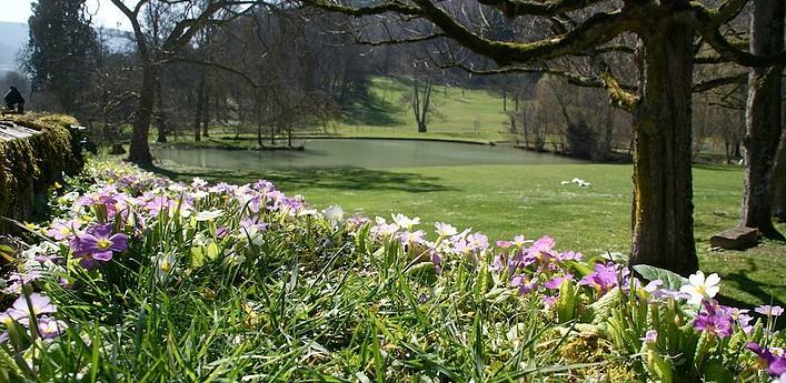 Image Jardins du Château de Barbirey