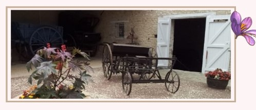 Image Musée du Safran