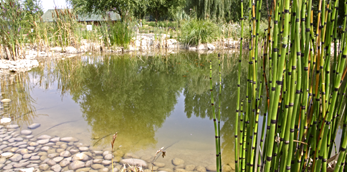 Image Jardin pédagogique des Allivoz