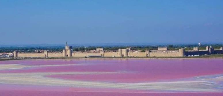 Image Tours et remparts d'Aigues-Mortes
