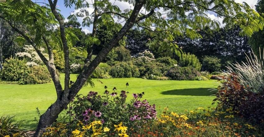 Image Les jardins des Renaudies