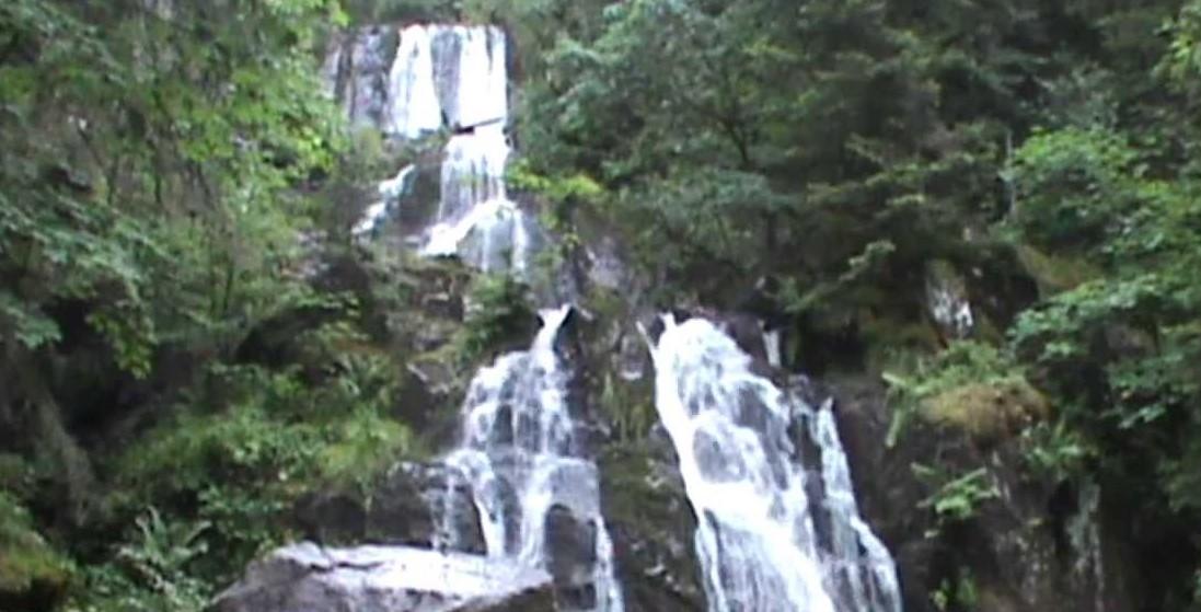 Image Cascades de Tendon