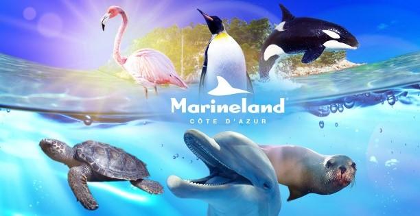 Image Marineland - Aquasplash - Kids Island - Adventure Golf
