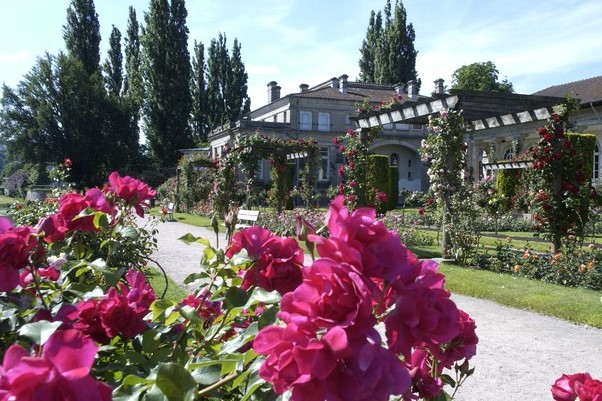 Image Roseraie de la Maison Romaine